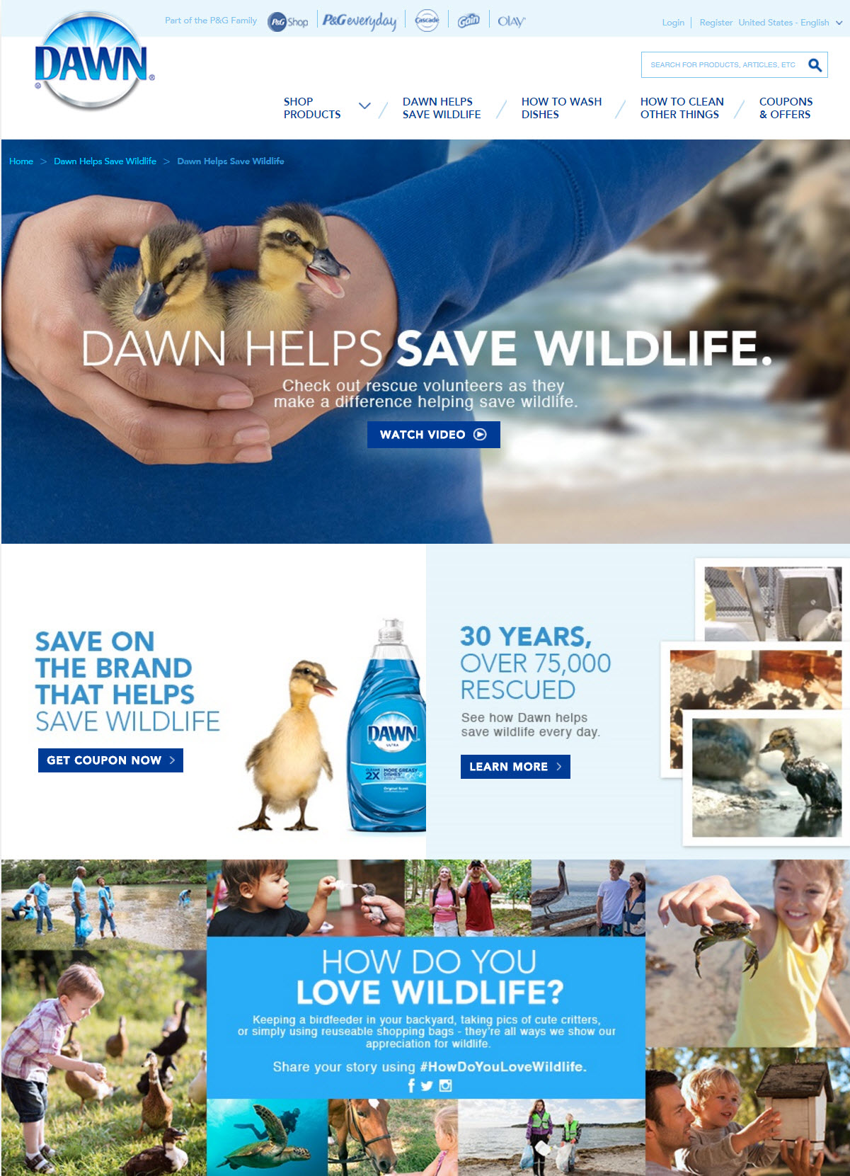 'Dawn Saves Wildlife' Microsite